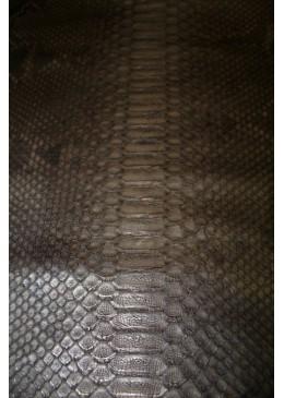 Peau de Python Back Cut